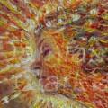 Fire Fairy (Head Detail) Print